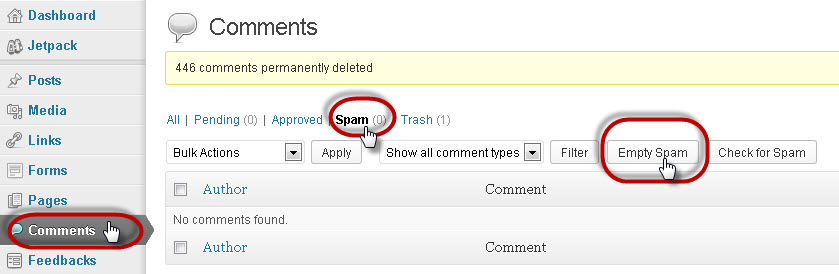 Deleting Spam Comments_Final